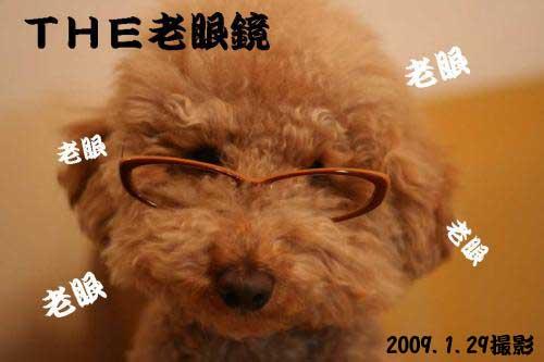 老眼鏡2009s