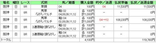 20100711hs6r-11.jpg
