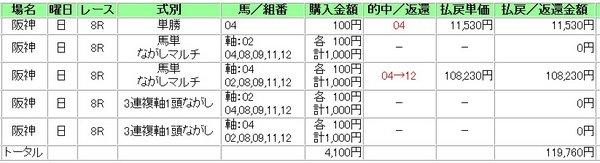 20100711hs8r-5.jpg