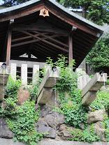 大阪市内唯一の自然滝