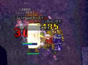 2011.9.24 ろ。 このハエやろぉ(゜Д゜) 7