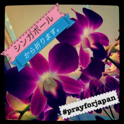JAPAN18
