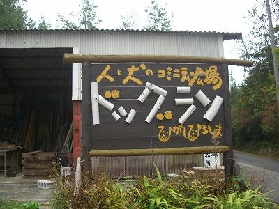 20111028 (13)