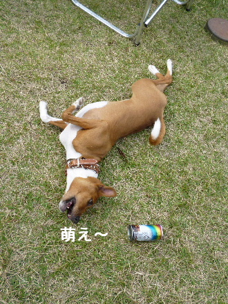 2011_1023ナッキー0103