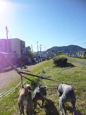 2011_1204ナッキー0019