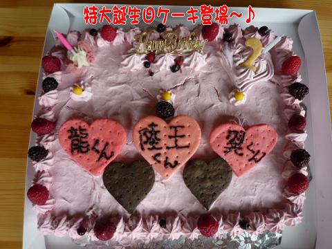 s特大ケーキ