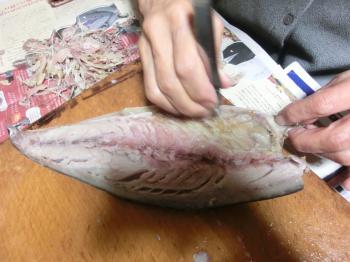 鯖寿司113小