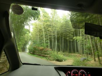 京都110301小
