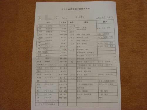 DSC00273_convert_20100801102459.jpg
