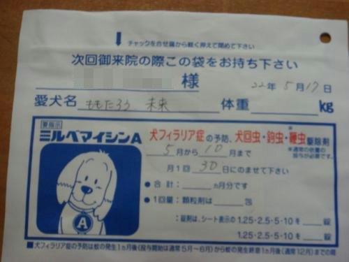 DSC00276_convert_20100801102552.jpg
