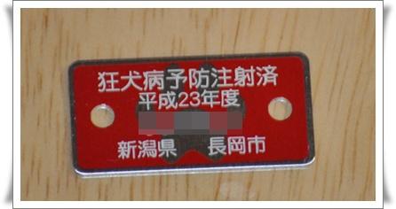 DSC_0312-crop.jpg