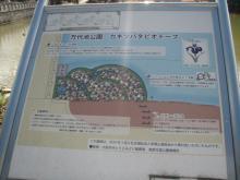 PC300023.jpg
