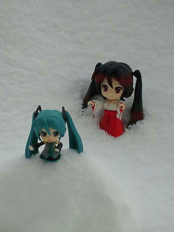 雪ミク祭り19