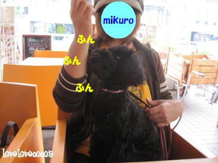 IMG_7117-cocoa.jpg