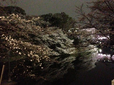 kabuki.jpg