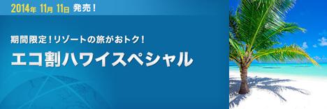 ANAは、ホノルル線に期間限定の「エコ割ハワイスペシャル」を設定!燃油サーチャージ込みで76,600円~!