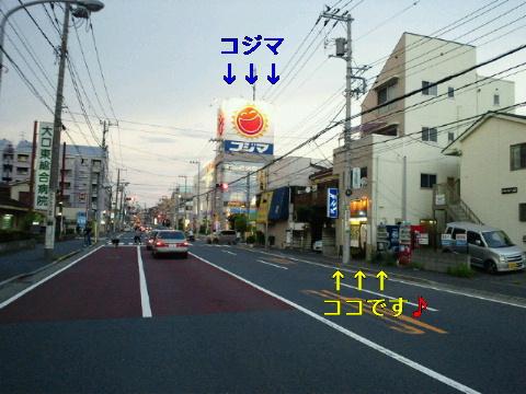 NEC_0020_20110817134854.jpg