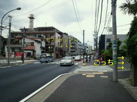 NEC_0021_20110609200626.jpg