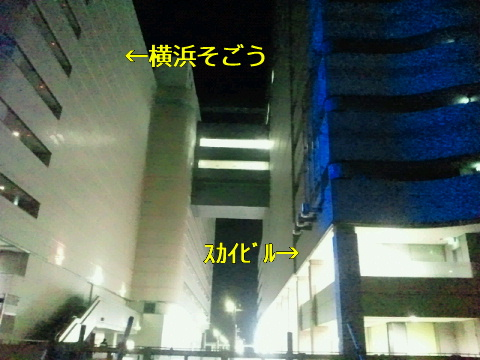 NEC_0022_20110225003244.jpg