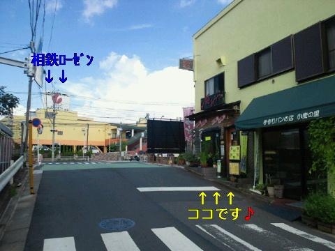 NEC_0105_20110827004207.jpg