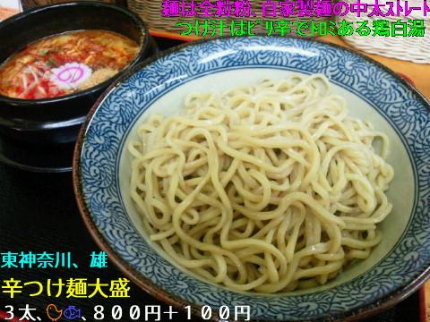 NEC_0135_20110618231219.jpg