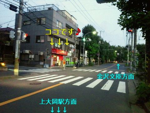NEC_0167_20110830002341.jpg