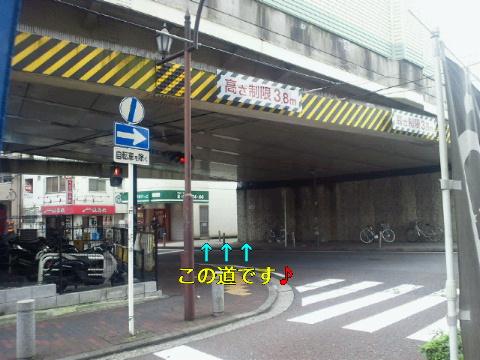 NEC_0173_20110622115420.jpg