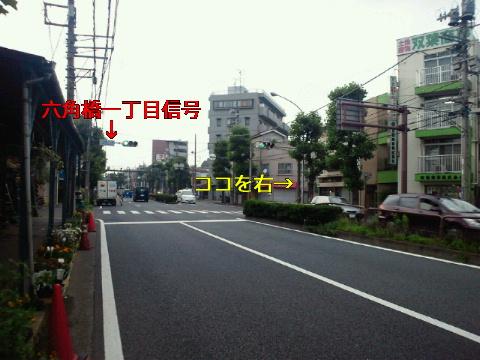NEC_0239_20110628004539.jpg