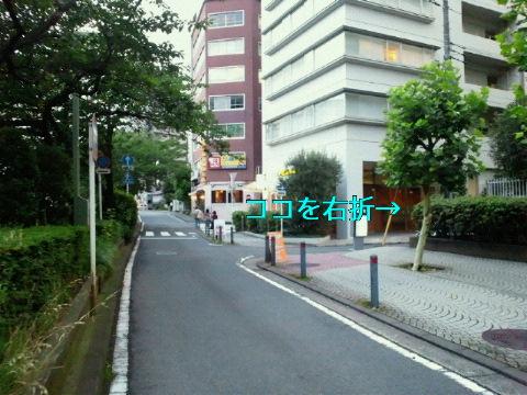 NEC_0270_20110630231805.jpg