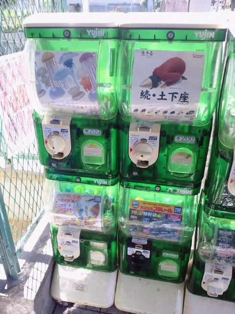 NEC_0350_20110711215832.jpg