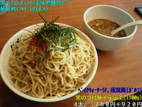 NEC_1096_20110113232219.jpg