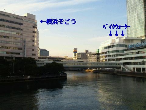 NEC_1105_20110113232310.jpg