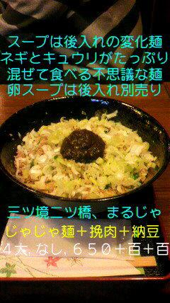 P1140001_20100307104355.jpg