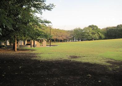 公園1_edited-1