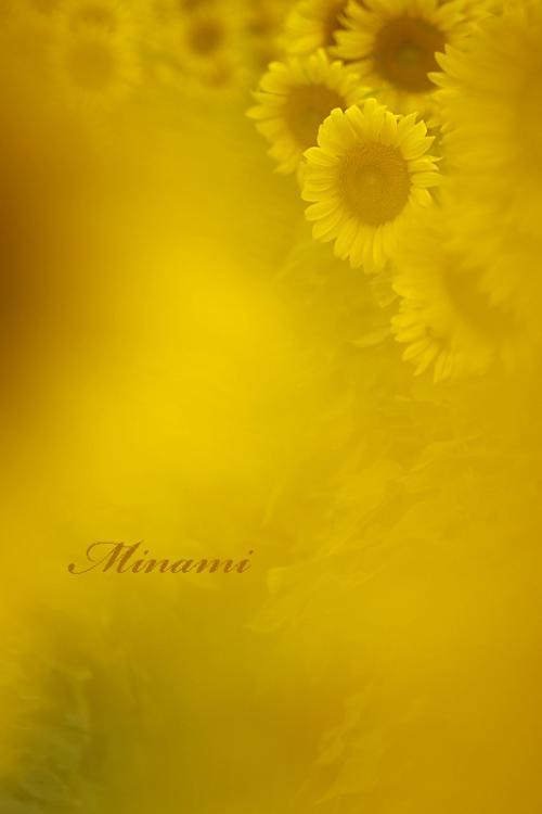 MG_8476.jpg