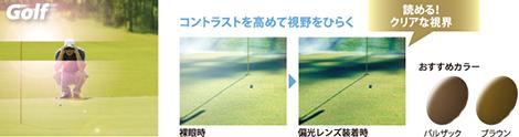 ポラテック ゴルフ
