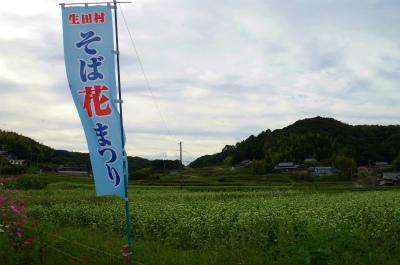 sIMGP2146.jpg