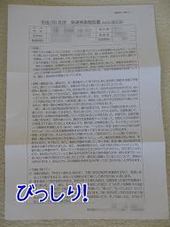 発達検査報告書