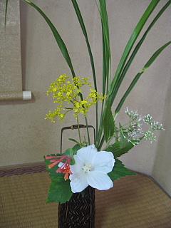 9月3日お花