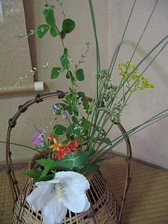 9月10日お花