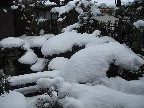 2011 1 雪