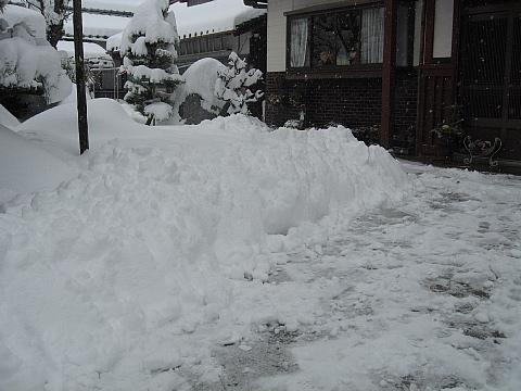 雪1,31