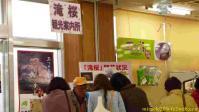 阿武隈高原S.A(下り)の滝桜観光案内所