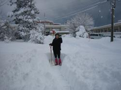 雪かき1,31