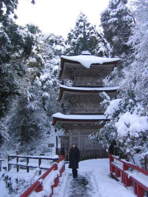 名刹雪の五重塔