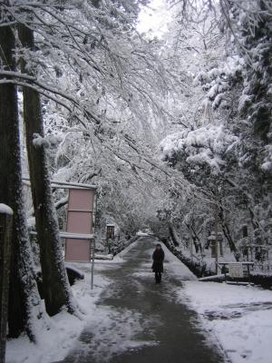 名刹那谷寺1
