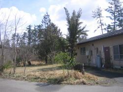 春の加賀の家2