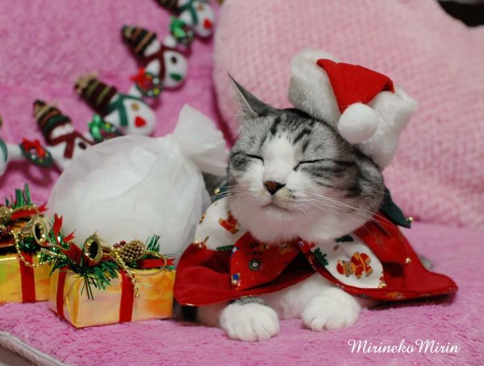 ミリンのクリスマス