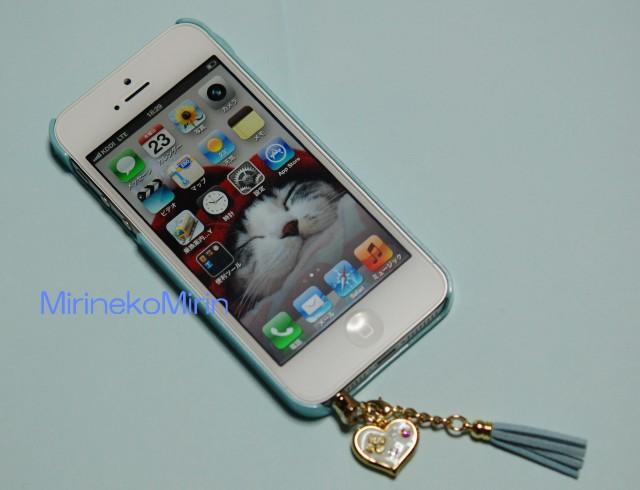 20130123iPhone1