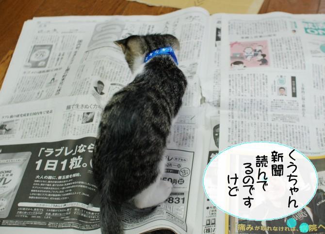 20131107くう新聞